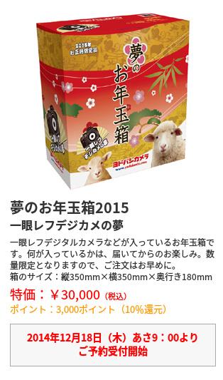 ヨドバシカメラ2015福袋・デジタル一眼レフカメラ